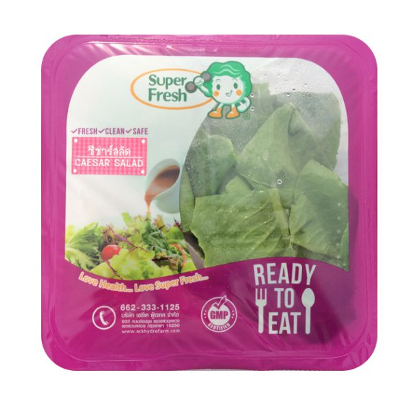 ซีซาร์สลัด caesar salad ผักสด ผักออแกนิกส์ เมนูสลัดพร้อมรับประทาน