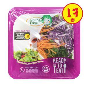 Vegetarian Delight Salad เวจจิแทเรียนดีไลท์สลัด